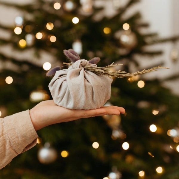 Holding A Wrapped Christmas Gift infront of Big Christmas Tree with Lights