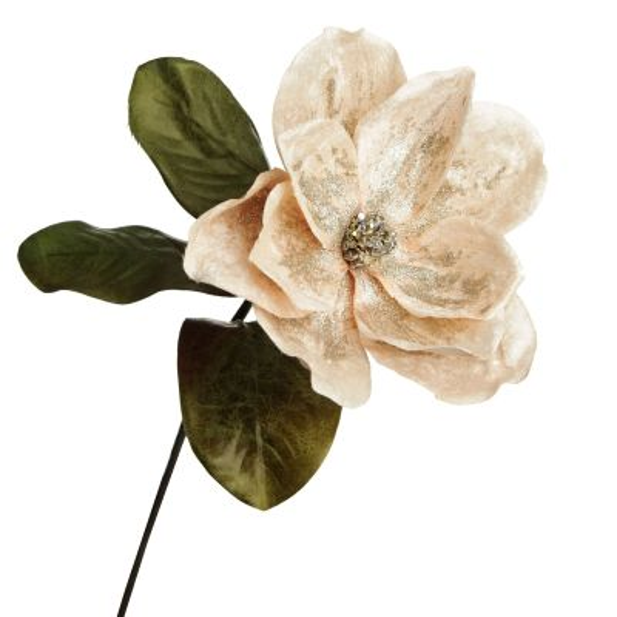 Ivory Magnolia Flower