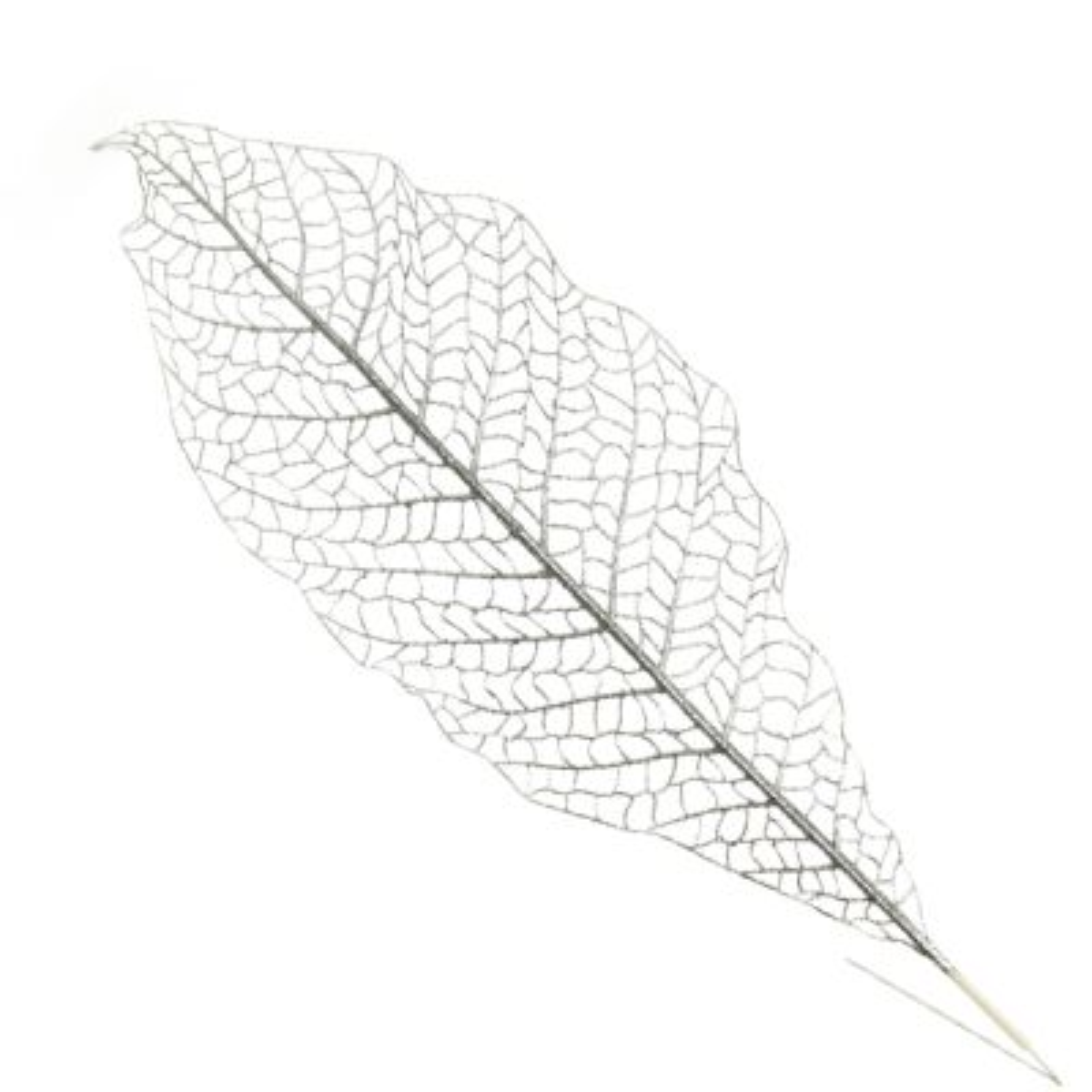 Silver Mesh Palm Leaf