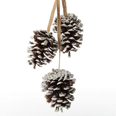 Natural Snow Tipped Pine Cone Drop Trio